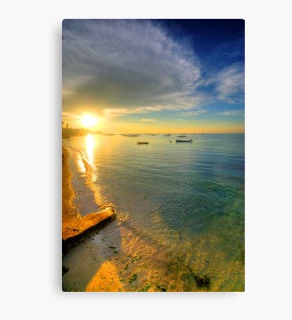 Some Days Stay Gold Forever Canvas Print