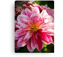 """Flowers whisper """"Beauty!"""" to the world Canvas Print"""