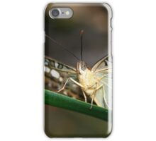 Under my Wings Clipper - Parthenos sylvia iPhone Case/Skin