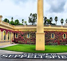 Welcome To Seppeltsfield Panorama by Shannon Rogers