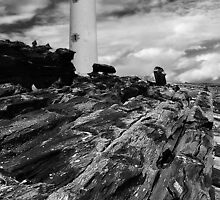 Driftwood to Lighthouse by KWTImages