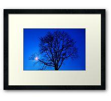 Tree in blue sky Framed Print
