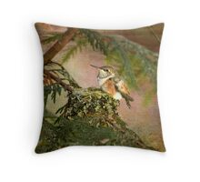 Baby Hummingbird on Hummingbird Nest Throw Pillow