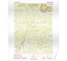 USGS Topo Map California Beaver Mountain 288283 1990 24000 Poster