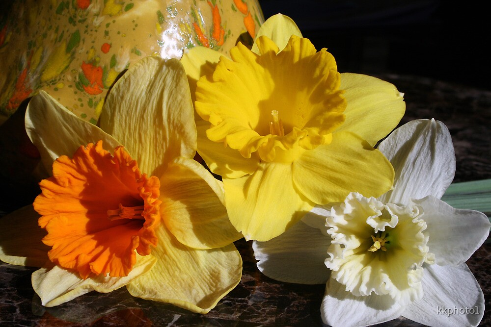 Daffodil Threesome by kkphoto1