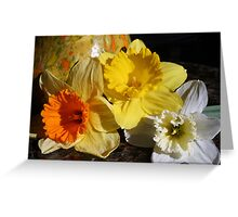Daffodil Threesome Greeting Card