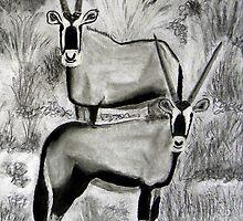 Antelope: Gemsbuck  (Oryx gazella) by Pieta Pieterse