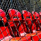 Red in a Cage by Richard Earl