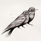 two ravens by federico cortese