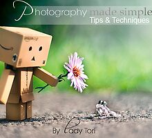 Photography Made Simple E-Book! by Lady-Tori