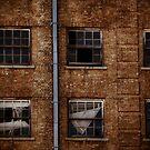 Baker Hotel Windows by Lynnette Peizer