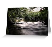 willow brook Greeting Card