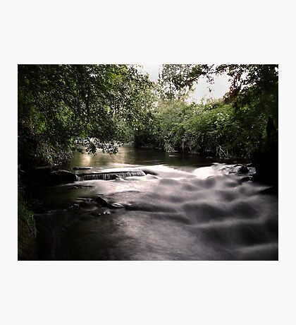 willow brook Photographic Print