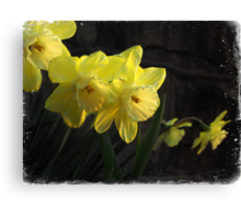 Waves of Spring Canvas Print