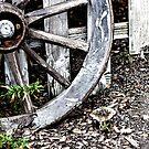Wagon Wheels by ©FoxfireGallery / FloorOne Photography