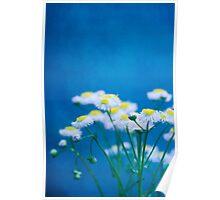 Feeling Blue Poster
