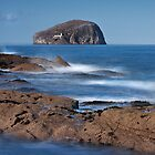 Bass Rock by KWTImages