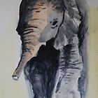 elephant sketch by Lynn Hughes