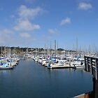 Monterey Bay Fisherman's Wharf Harbor by Sandra Gray