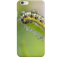 Cabbage White with Dewdrops iPhone Case/Skin
