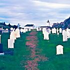 Twillingate Cemetery by Yukondick