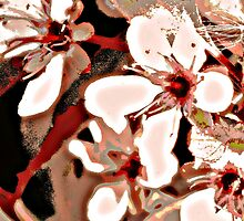 Sand Cherry by tgwithin