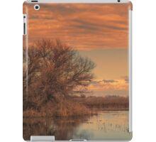 Marsh Sunset iPad Case/Skin
