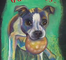 Boston Terrier - Spay/Neuter by Ann Marie Hoff