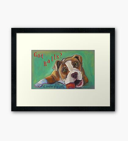 Bulldog - Spay/Neuter Framed Print