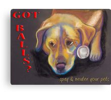 Golden Lab - Spay/Neuter Canvas Print