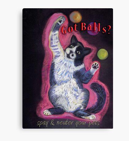 Juggling Cat - Spay/Neuter Canvas Print