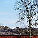 Red Barn With Tree by Mary Carol Story