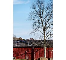 Red Barn With Tree Photographic Print