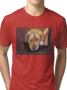 Got Balls? Golden Lab Tri-blend T-Shirt