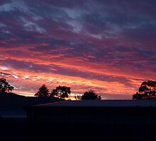 Suburban Sunset by feelingpaulie