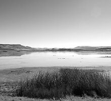 big land, big sky #2... by Allan  Erickson