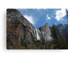 water falling.  Canvas Print