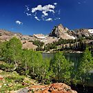 Lake Blanche, Summer Foliage by Ryan Houston