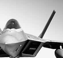F-22 Raptor by JoeyKelava