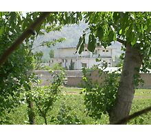 Pakistan- Al-Qaeda leader Osama bin Laden Compound  Photographic Print