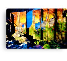 the colour of decay Canvas Print