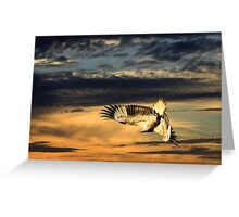 Wedge-tailed Loops Greeting Card