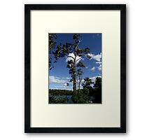Blowing in the wind. Framed Print