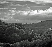 Rhosrobin landscape by Niall Allen
