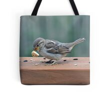 Fledgling house sparrow learning to eat on her own Tote Bag