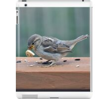 Fledgling house sparrow learning to eat on her own iPad Case/Skin