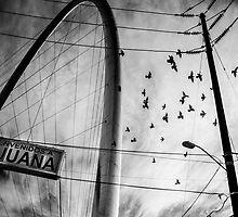 Bienvenidos a Tijuana by Hanna Silbermayr