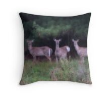An Audience of Three Throw Pillow