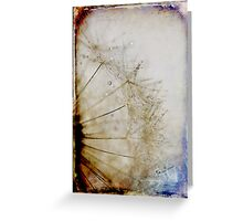 Dandelion Grunged Greeting Card