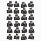 24 Cameras by Artberry